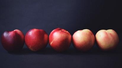 Când se coc nectarinele?