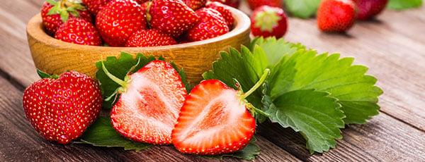 Căpșuni remontanți: tundere, fertilizare, protejare
