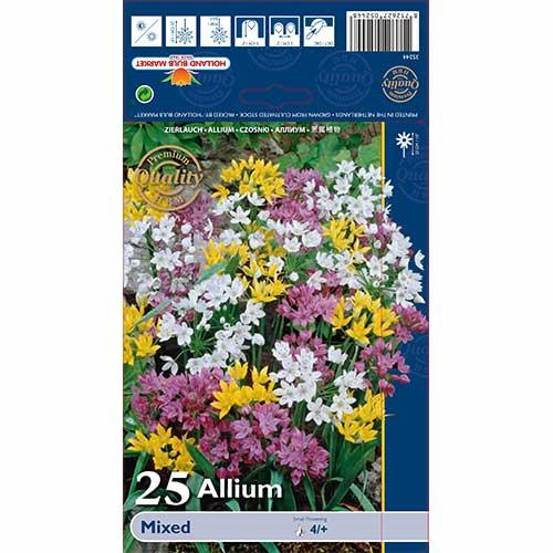 Allium mix multicolor imagine 1 articol 67298