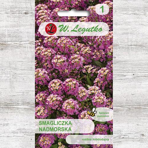 Alyssum roz Legutko imagine 1 articol 87090
