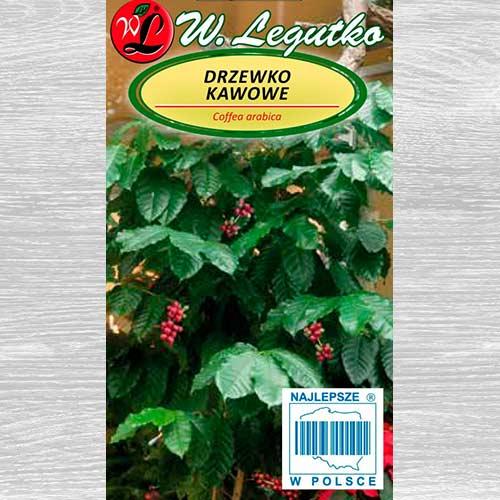 Arbore de cafea Legutko imagine 1 articol 69583