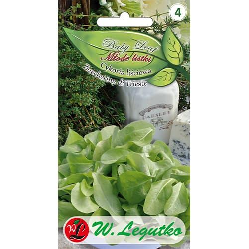 Baby Leaf - Cicoare de frunze Zuccherina di Trieste Legutko imagine 1 articol 86705
