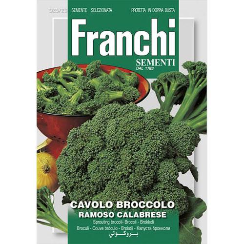 Broccoli Ramoso Calabrese imagine 1 articol 87140