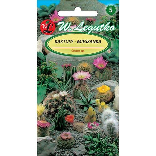 Cactus, mix multicolor Legutko imagine 1 articol 69595