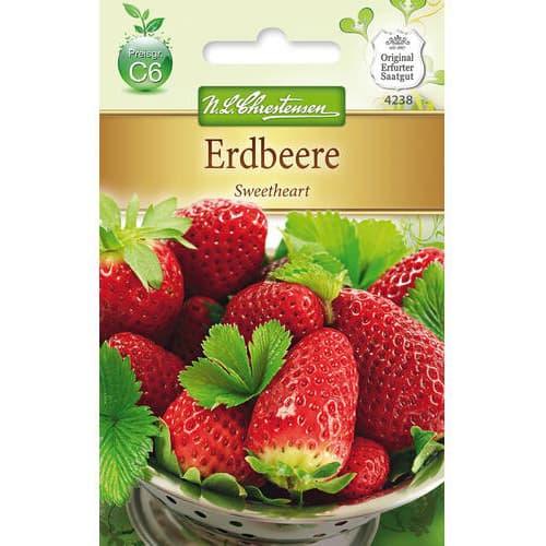 Căpșuni Sweetheart Chrestensen imagine 1 articol 78784