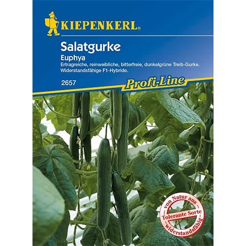 Castraveți de salată Euphya F1 Kiepenkerl imagine 1 articol 86521