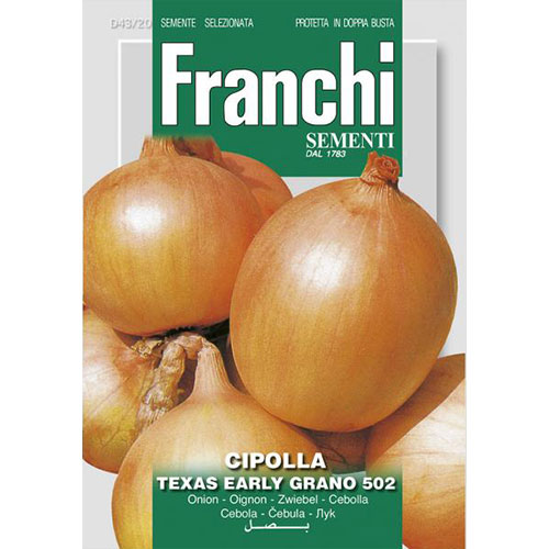 Ceapă aurie Texas Early Grano 502 imagine 1 articol 87148