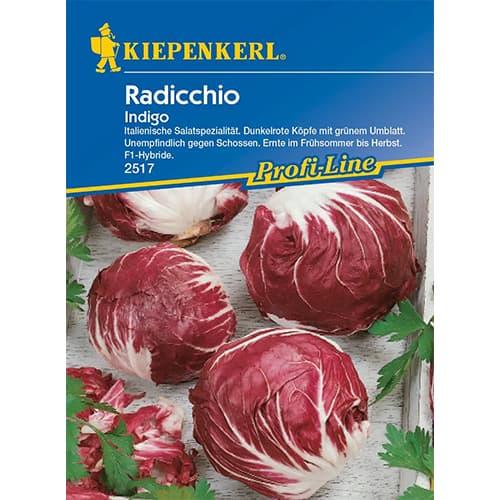 Cicoare roșie (radicchio) Indigo Kiepenkerl imagine 1 articol 86507