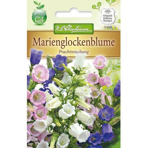 Clopoțel (Campanula), mix multicolor Chrestensen imagine 1 articol 78953