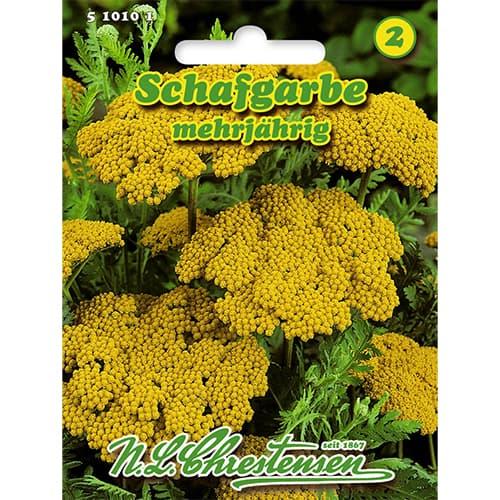 Coada șoricelului galbenă Chrestensen imagine 1 articol 86114