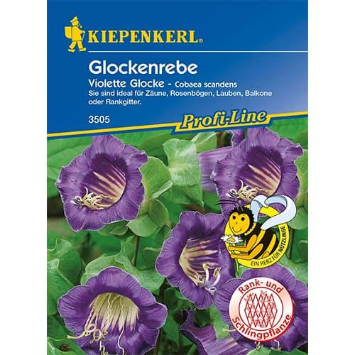 Cobaea Violett Kiepenkerl imagine 1 articol 86266