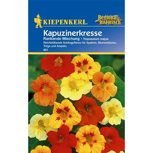 Condurul doamnei Rankende, mix multicolor Kiepenkerl imagine 1 articol 77398