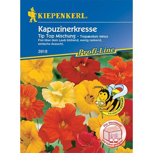 Condurul doamnei Tip Top, mix multicolor Kiepenkerl imagine 1 articol 86276