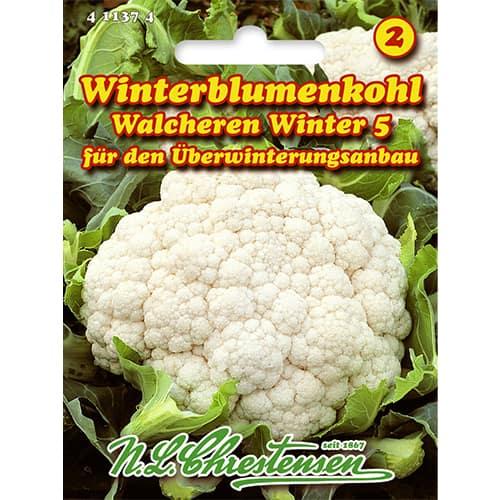 Conopidă Walcheren Winter 5 Chrestensen imagine 1 articol 86026