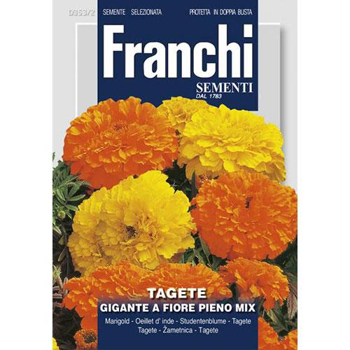 Crăițe gigant cu flori pline, mix multicolor imagine 1 articol 87308