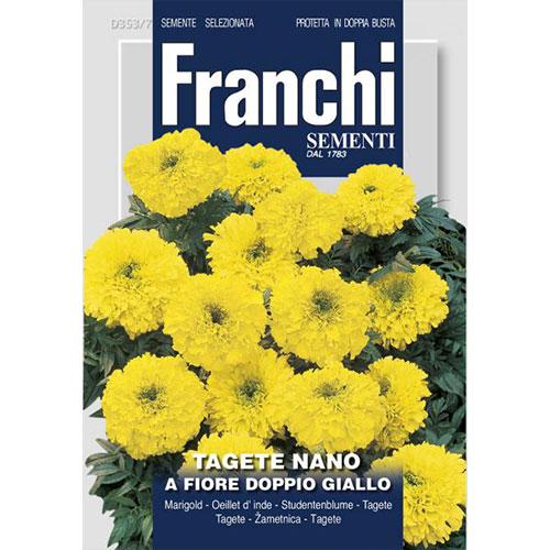 Crăițe pitice cu flori duble galbene imagine 1 articol 87309