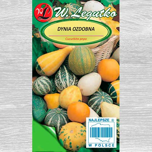Dovleac decorativ, mix multicolor Legutko imagine 1 articol 69584