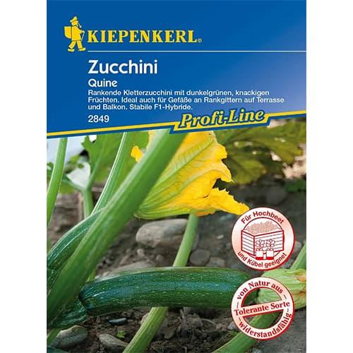 Dovlecel zucchini Quine F1 Kiepenkerl imagine 1 articol 86366