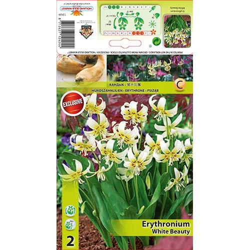Erythronium White Beauty imagine 1 articol 67351