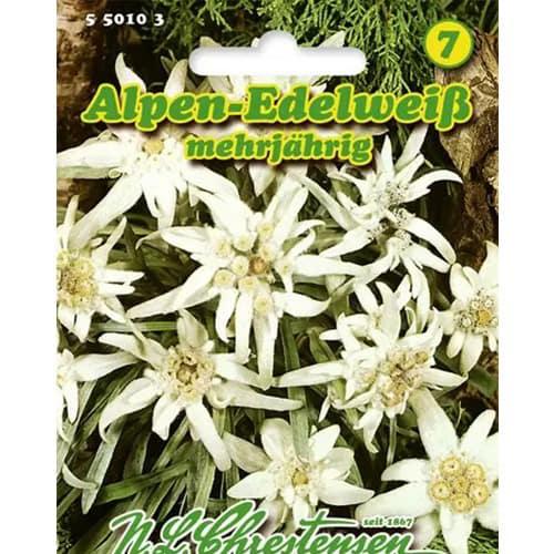 Floare de colț (Leontopodium alpinum) Chrestensen imagine 1 articol 86163
