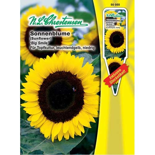 Floare soarelui decorativă Big Smile Chrestensen imagine 1 articol 86188