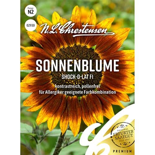 Floare soarelui decorativă Shock-o-lat F1 Chrestensen imagine 1 articol 86191