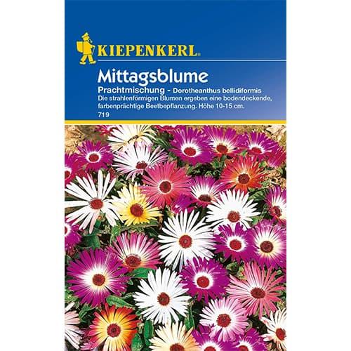 Floarea de gheaţă Kiepenkerl imagine 1 articol 77404