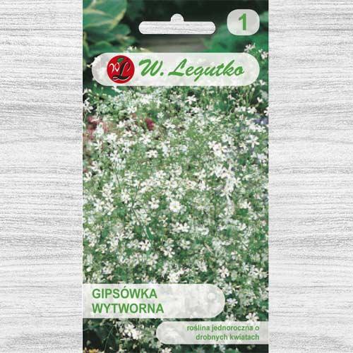 Floarea miresei (Gypsophila) albă Legutko imagine 1 articol 78555