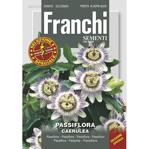 Floarea pasiunii imagine 1 articol 87313