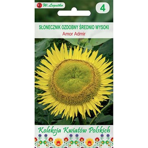 Floarea soarelui decorativă Amor Admir Legutko imagine 1 articol 86732