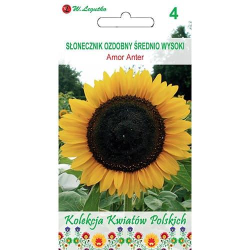 Floarea soarelui decorativă Amor Anter Legutko imagine 1 articol 86733