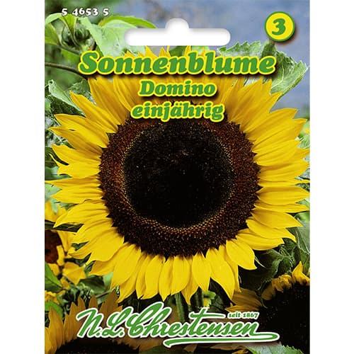 Floarea soarelui decorativă Domino Chrestensen imagine 1 articol 86151