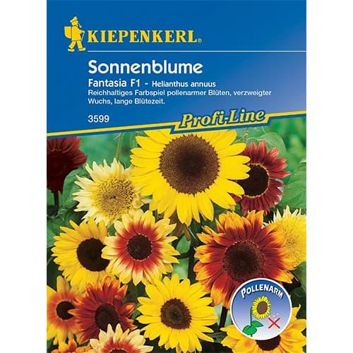 Floarea soarelui decorativă Fantasia F1 Kiepenkerl imagine 1 articol 86320