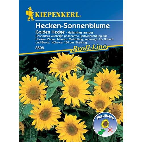 Floarea soarelui decorativă Golden Hedge Kiepenkerl imagine 1 articol 86322