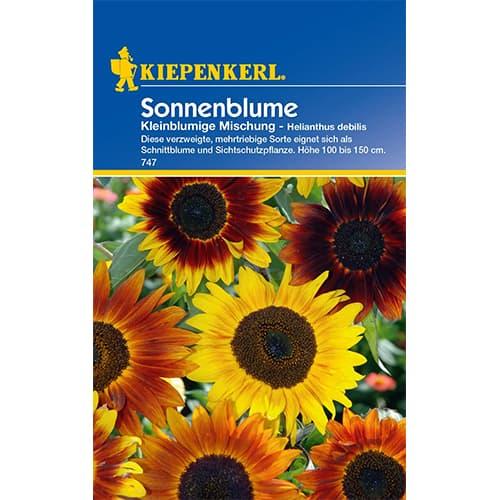 Floarea soarelui decorativă pitică Kiepenkerl imagine 1 articol 77407