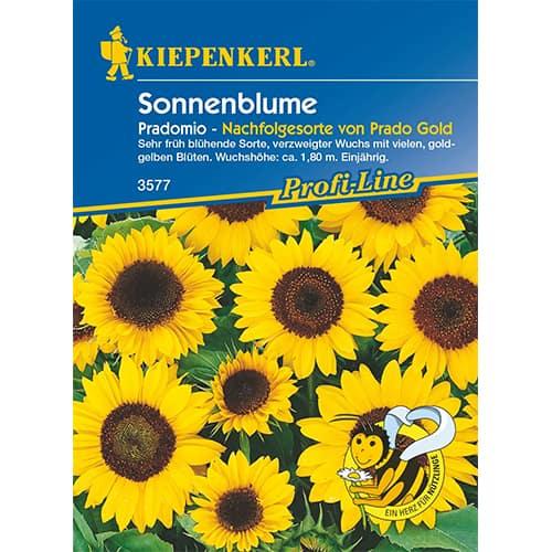 Floarea soarelui decorativă Pradomio Kiepenkerl imagine 1 articol 87261