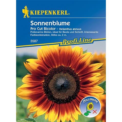 Floarea soarelui decorativă Pro Cut Bicolor F1 Kiepenkerl imagine 1 articol 86326
