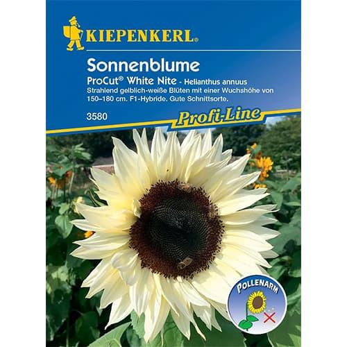 Floarea soarelui decorativă Pro Cut White Nite F1 Kiepenkerl imagine 1 articol 86327