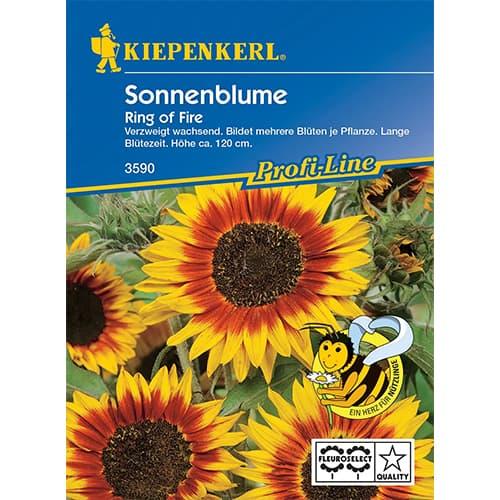 Floarea soarelui decorativă Ring of Fire Kiepenkerl imagine 1 articol 87262