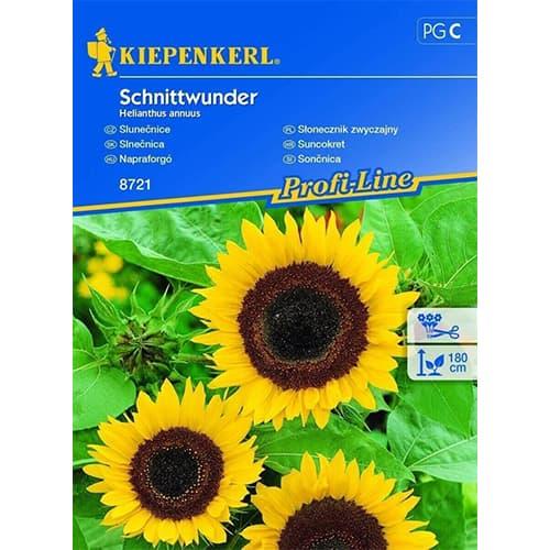 Floarea soarelui decorativă Schnittwunder Chrestensen imagine 1 articol 78916