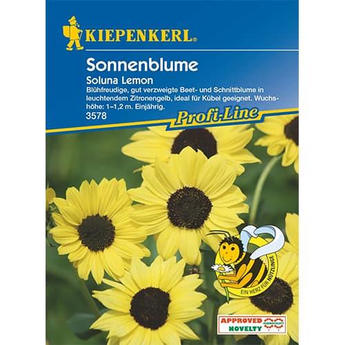 Floarea soarelui decorativă Soluna Lemon Kiepenkerl imagine 1 articol 87263