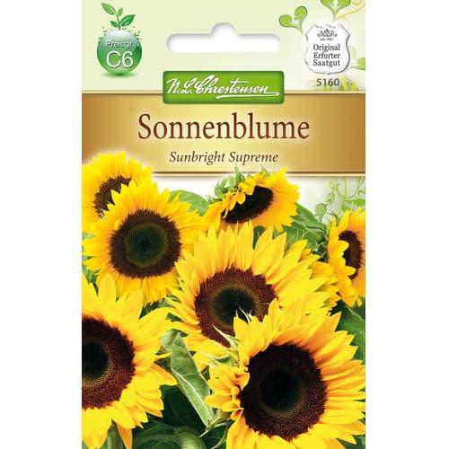 Floarea soarelui decorativă Sunbright Supreme F1 Chrestensen imagine 1 articol 78917