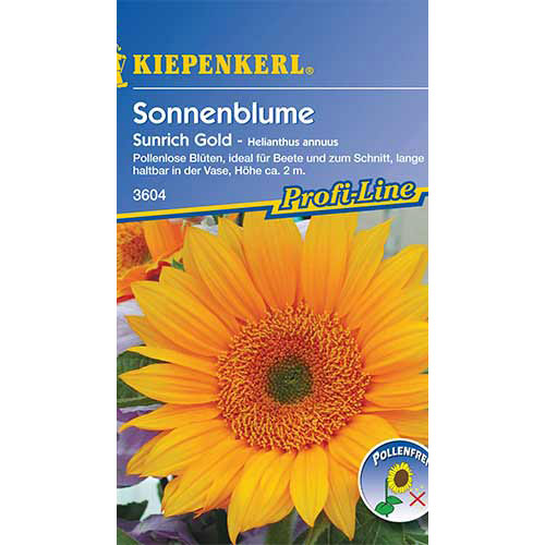 Floarea soarelui decorativă Sunrich Gold F1 Kiepenkerl imagine 1 articol 86328