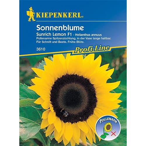 Floarea soarelui decorativă Sunrich Lemon F1 Kiepenkerl imagine 1 articol 86329