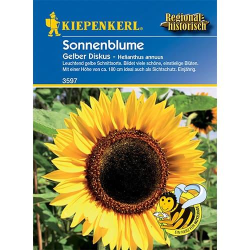 Floarea soarelui decorativă Yellow Disc Kiepenkerl imagine 1 articol 86321