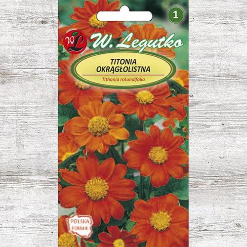 Floarea soarelui mexicană (Titonia) Legutko imagine 1 articol 87092