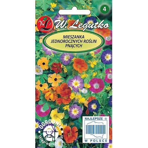 Flori cățărătoare, mix multicolor Legutko imagine 1 articol 69606