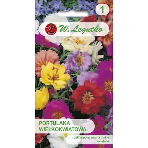 Flori de piatră, mix multicolor Legutko imagine 1 articol 78585