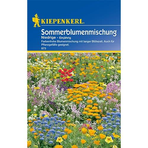Flori de vară pitice, mix multicolor Kiepenkerl imagine 1 articol 77409