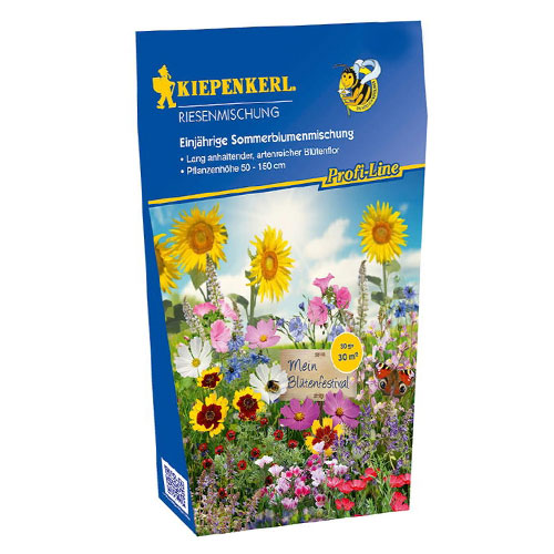 Flori gigant, mix multicolor Kiepenkerl imagine 1 articol 87249